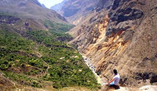 Canyon de Colca - Visiter Arequipa - Do it Yourself