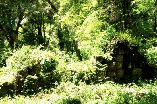 Mission Jésuite Loreto - encore en friche - ruines jésuites Misiones
