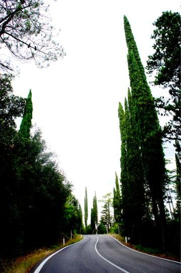 jean voyage, Road trip Italie _ Volterre, Sienne, Florence en 2 jours, voyage Toscane, blog voyage, cool blog voyage